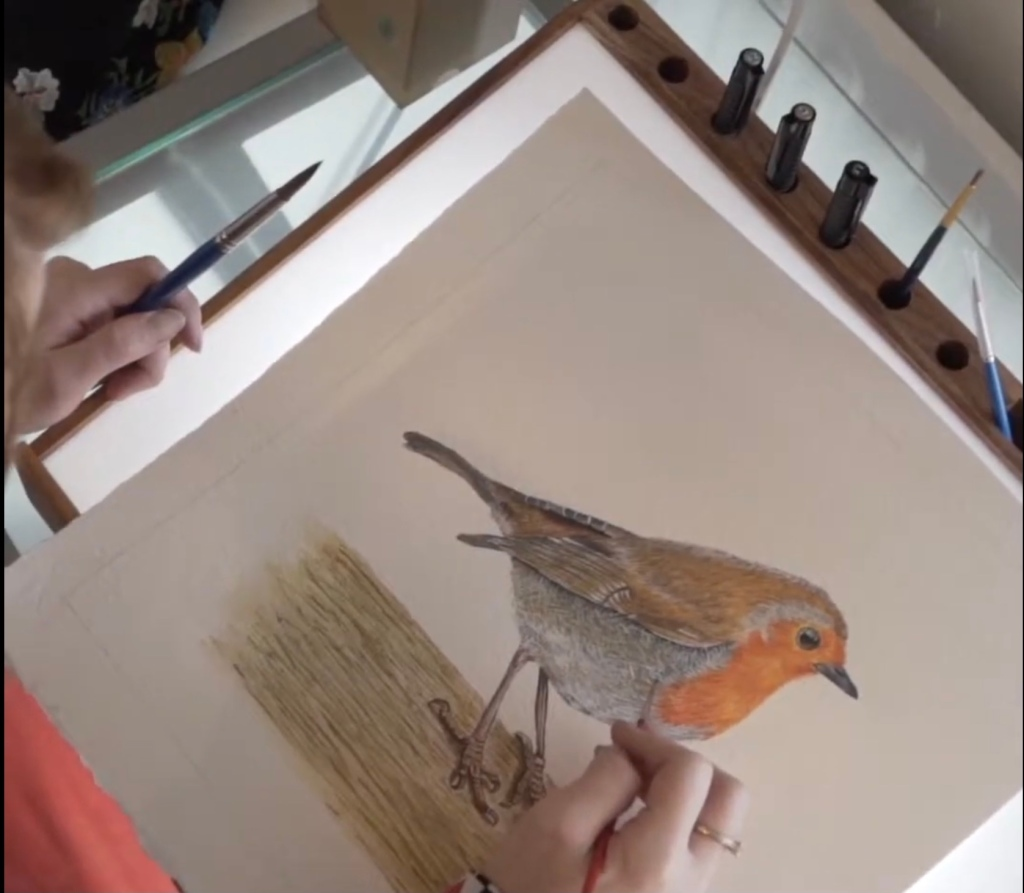 Image of a painting of a watercolour robin in progress